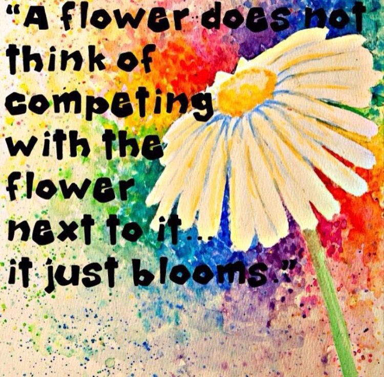 Pin by Jessica Palmer on Inspiration Flower quotes