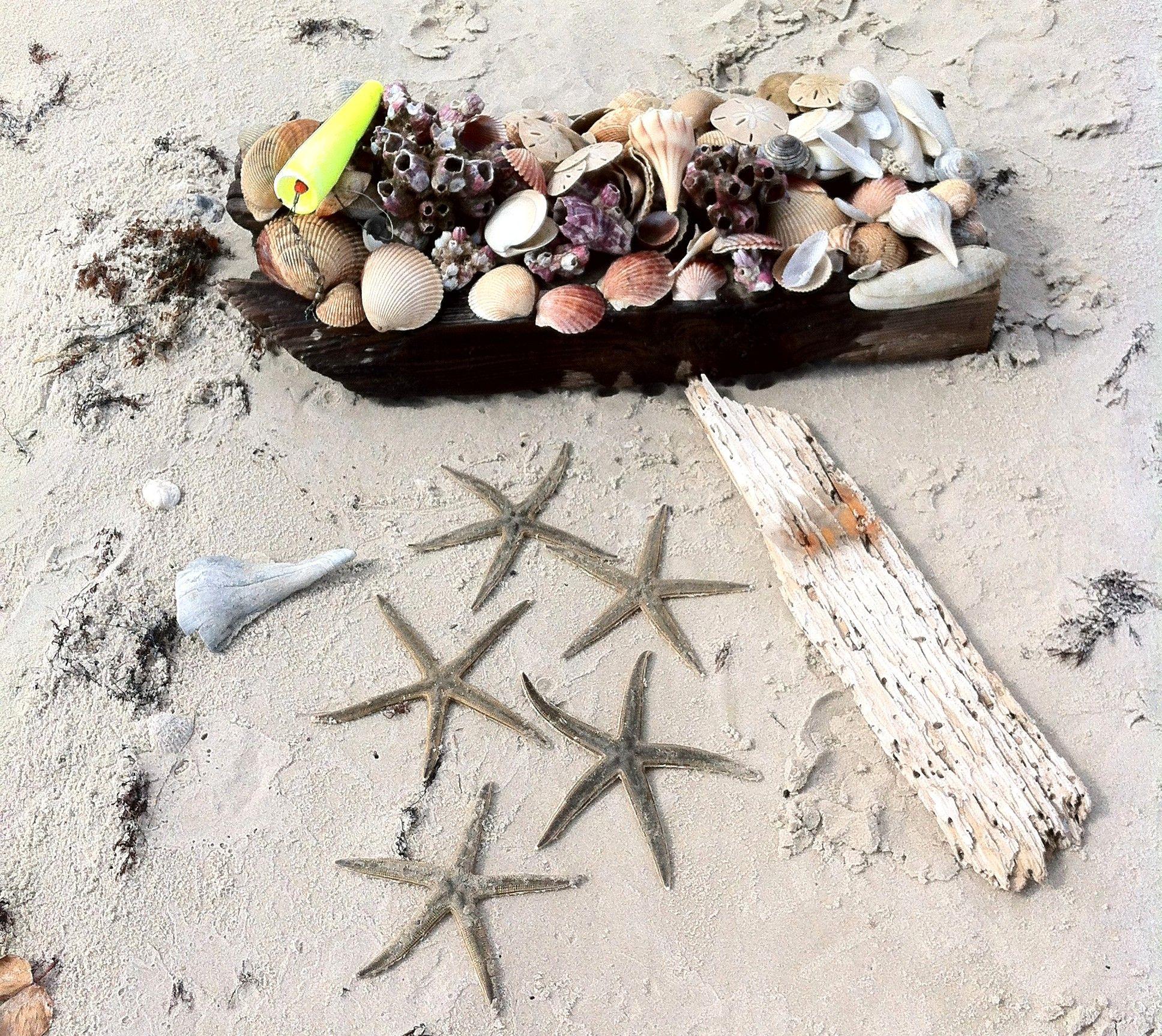 ~ Shelling At St. Jo Island
