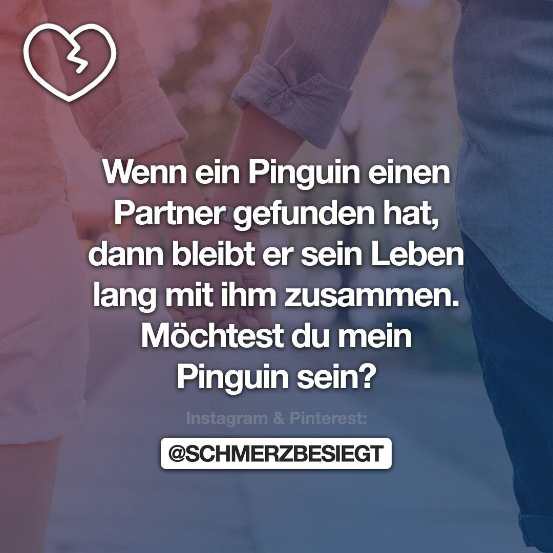 Wenn ein Pinguin einen Partner gefunden hat, dann bleibt