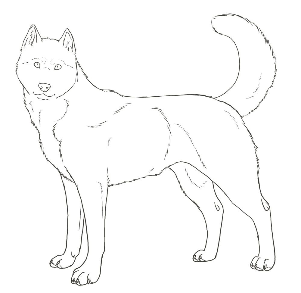 Husky Coloring Pages Best Coloring Pages For Kids Puppy Coloring Pages Animal Coloring Pages Horse Coloring Pages [ 973 x 1000 Pixel ]