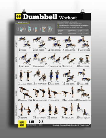 Full Body Dumbbell Workout Routine Pdf