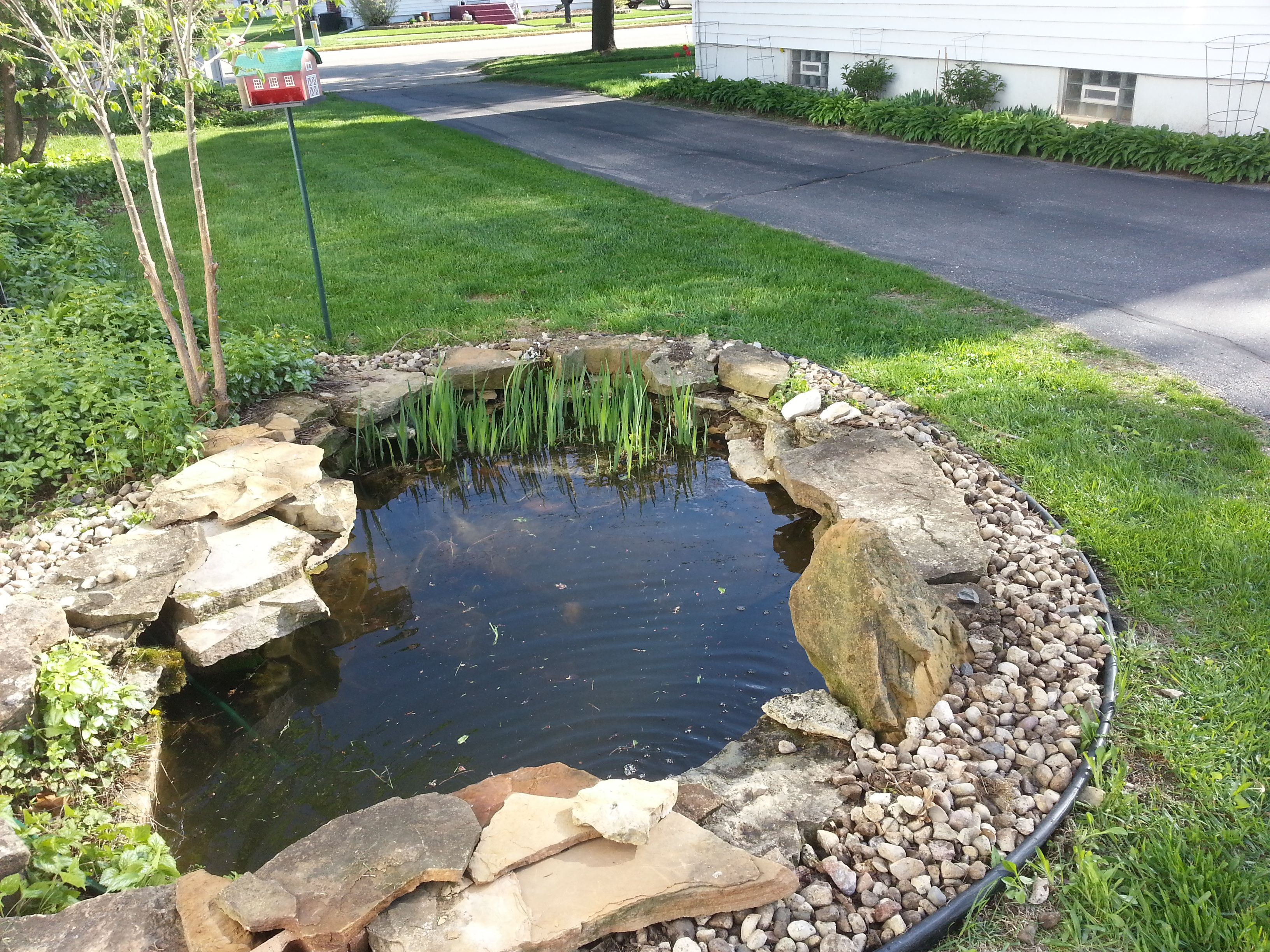 Bye Bye Weeds And Hello Rock Lined Pond
