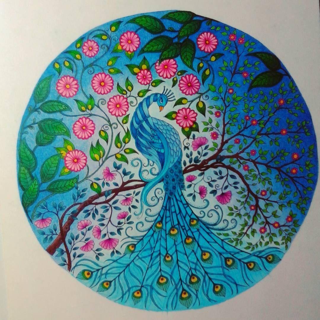 Peacock From Secret Garden Artist Edition Johannabasfordsecretgarden Johannab Johanna Basford Secret Garden Basford Secret Garden Secret Garden Coloring Book