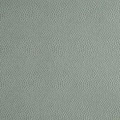 Robert Allen Contract drapeable elegant textures Nyolani | Jadestone