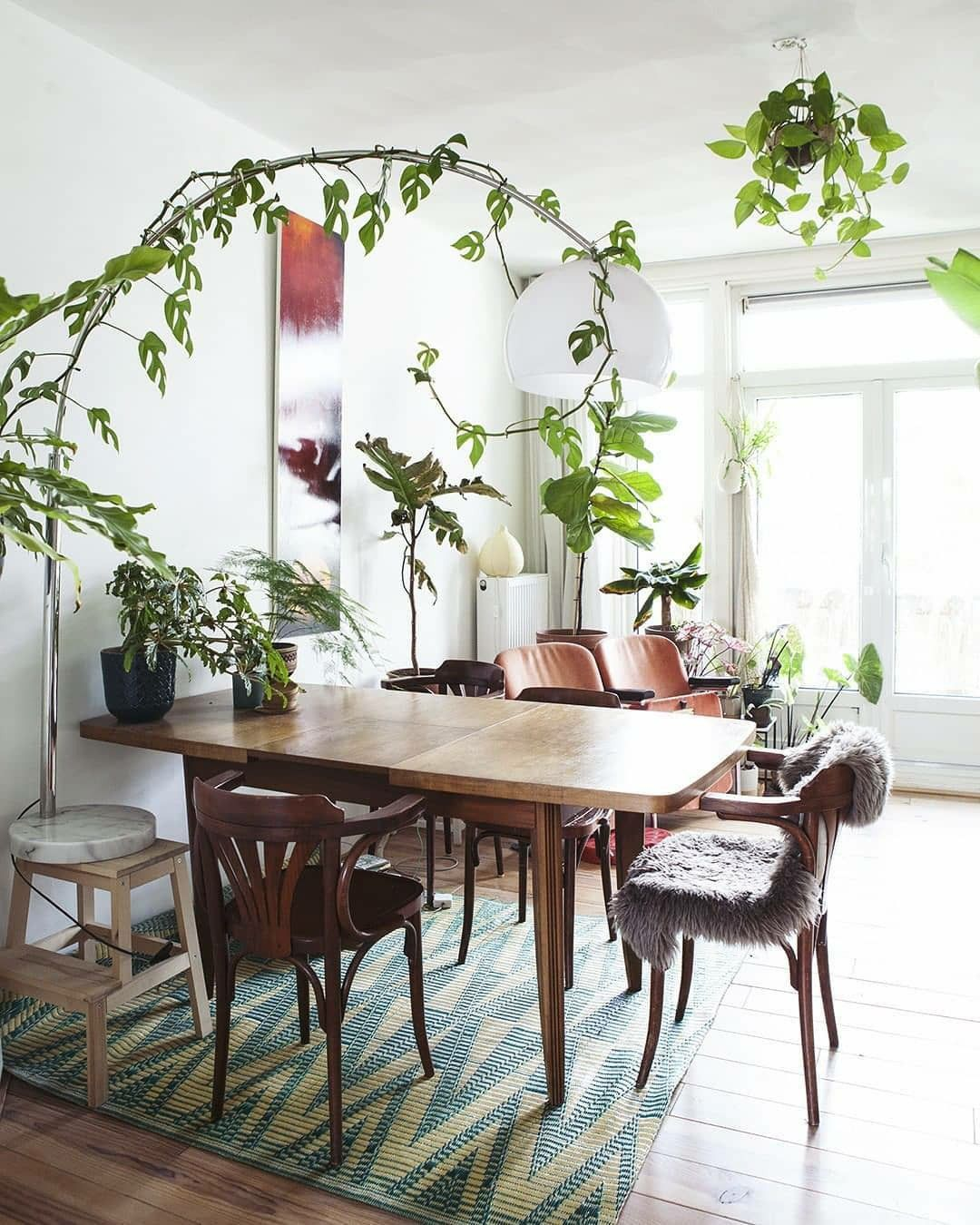 50 Creative Hanging Plants Ideas For Indoor In 2020 Best Indoor