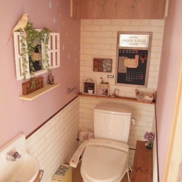 コンテスト参加中 ピンクの壁 偽物インコ フェイクグリーン Salut の