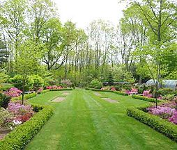 Sitemap Landscape Design Garden Landscape Design Landscape