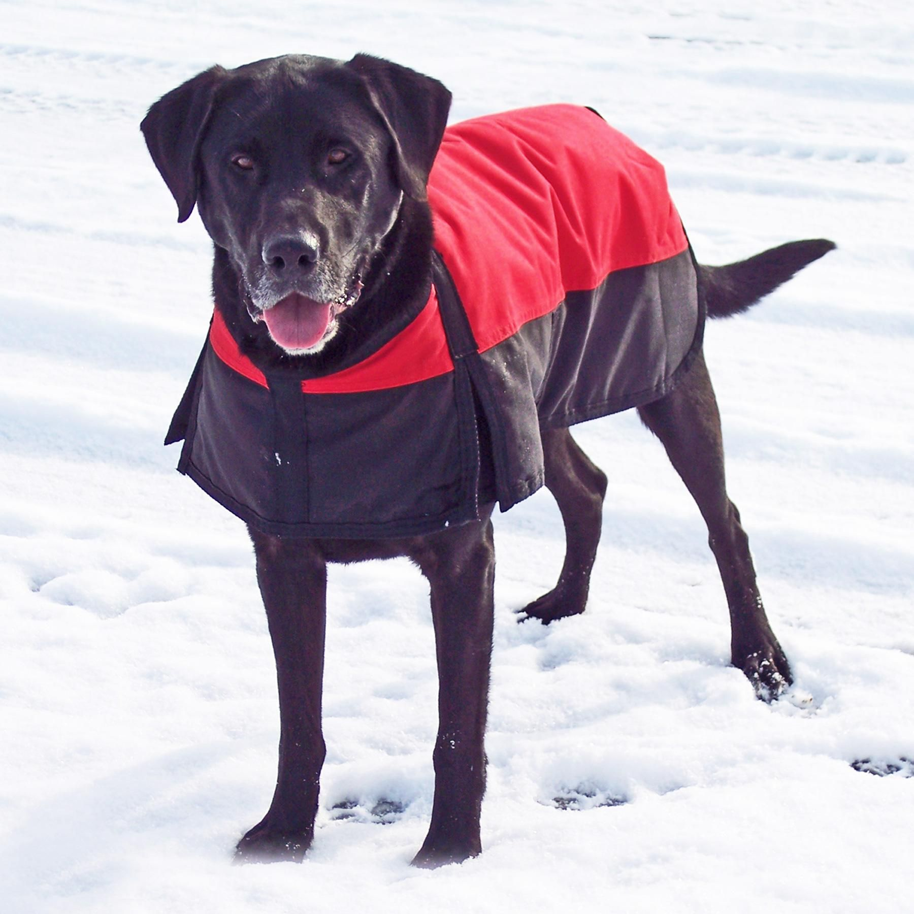 We Love Our Waterproof Insulated Dog Blankets Keep Your Best Friend Warm During Those Cold Winter Days Spent At The Waterproof Dog Coats Dog Coats Dog Clothes