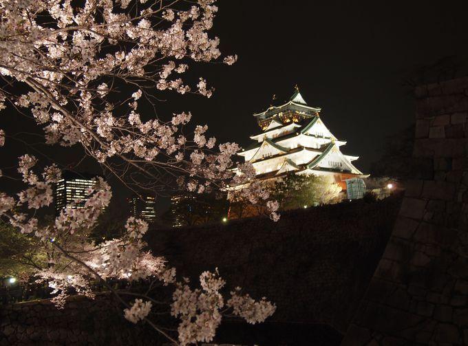 大阪城 旅の専門家が選ぶ!今年こそ見たい桜&お花見名所まとめ2014 | [たびねす] by Travel.jp