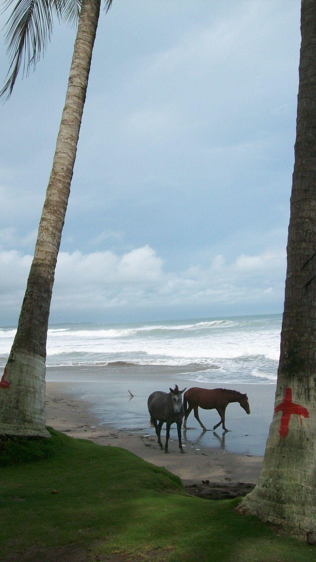 LA Sirena Esterillos Beach 5min Walk