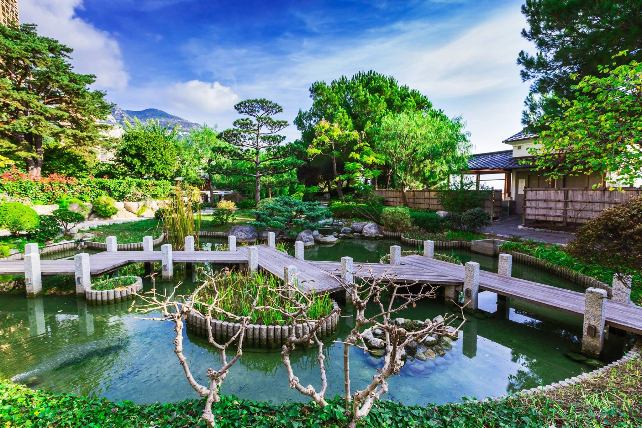 Jardin japonais MONACO Pinterest