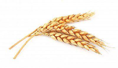 Slownik Tematyczny Jedzenie I Picie Z Wymowa I Obrazkiem Szlifuj Swoj Angielski Stock Photos Wheat Image