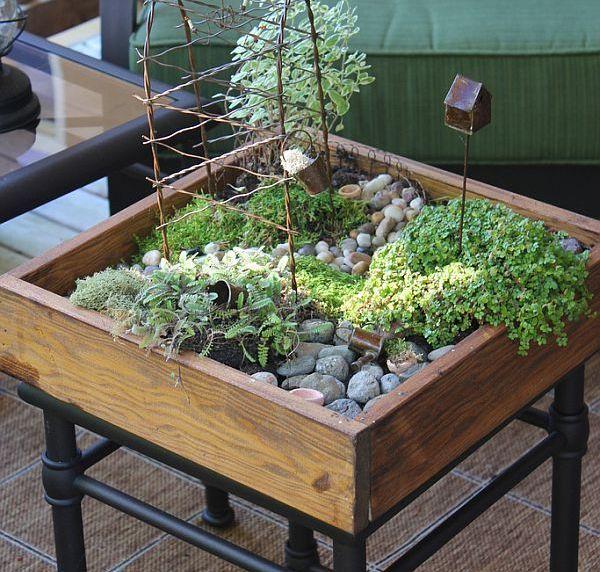 Lovely Diy Tabletop Mini Garden Try With Lettuce Rocks 400 x 300