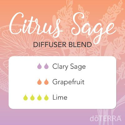 Natural Earth Oils: CITRUS SAGE DIFFUSER BLEND