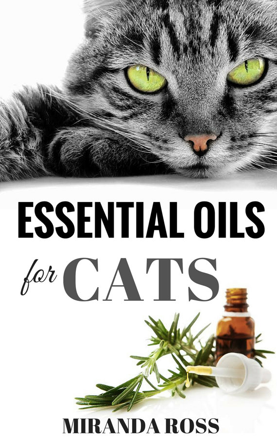 Did you know that essential oils can help keep your cat