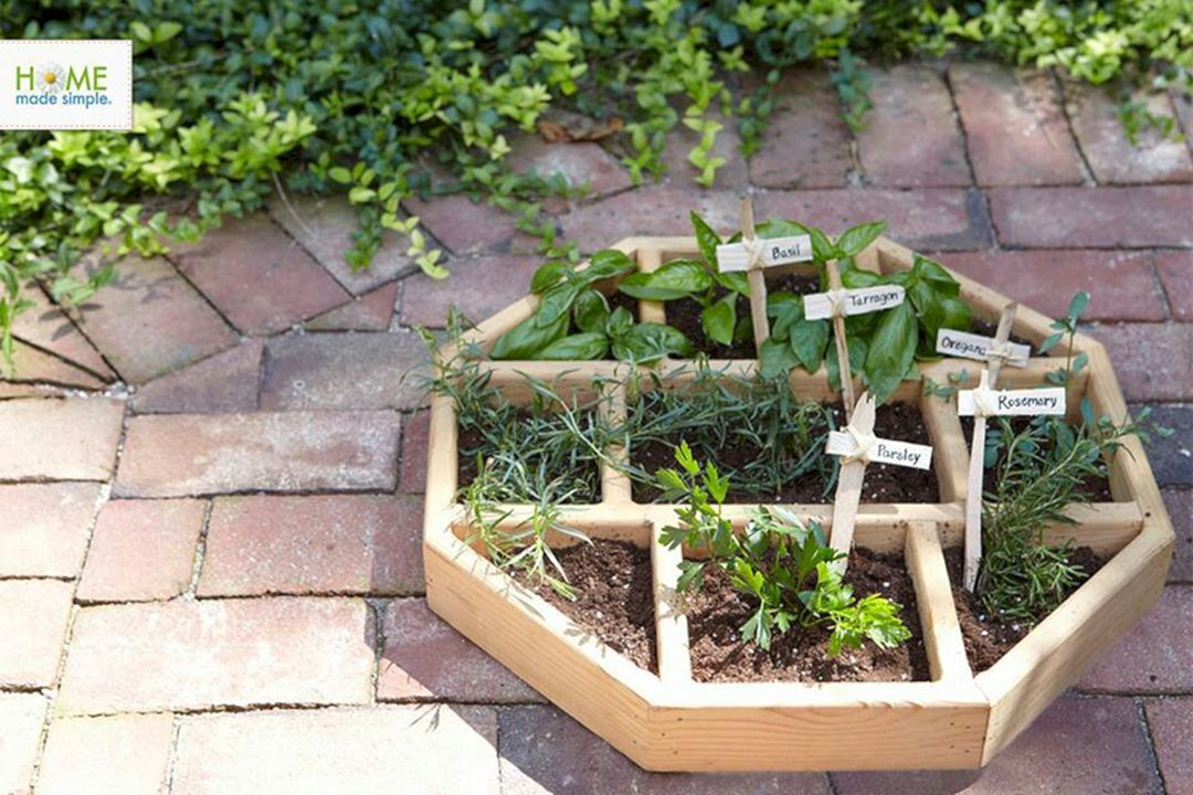 23 Most Productive Small Vegetable Garden Ideas For Your ...