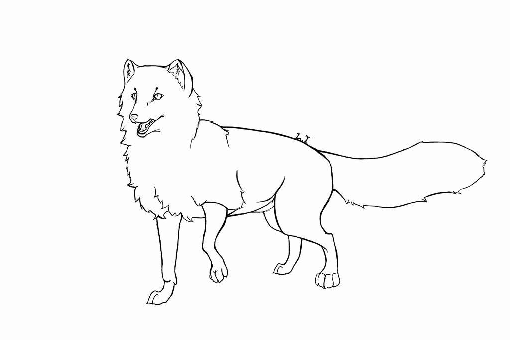 Arctic Fox Coloring Page Inspirational Arctic Fox Outline Drawing Sketch Coloring Page Fox Coloring Page Arctic Fox Color Arctic Animals