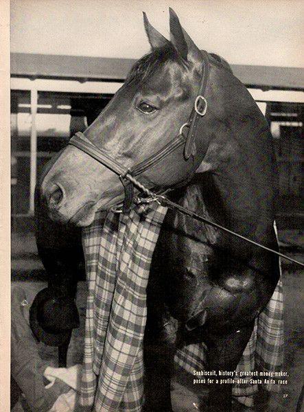 1940 Art Seabiscuit Race Horse Portrait Original Print Mooie Paarden Paarden
