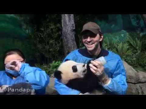 去熊猫厨房的路上