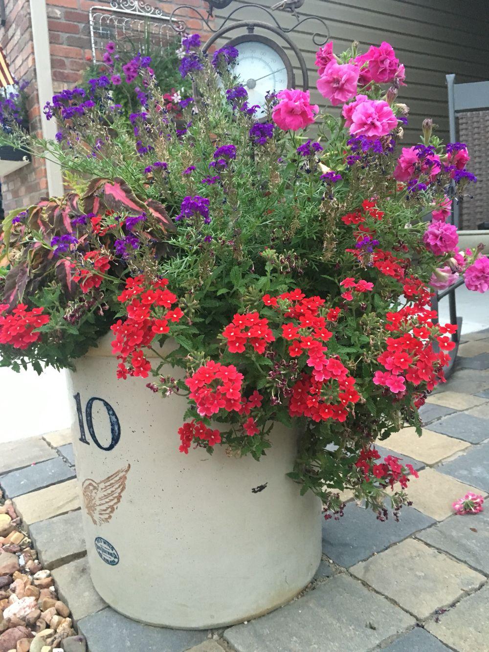 2016 flower pot