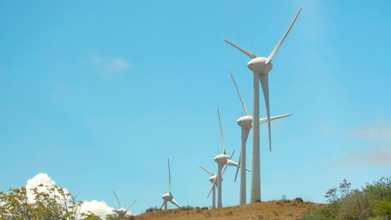 Greenpeace geht davon aus, dass bis 2050 weltweit kostenneutral auf erneuerbare Energien umgestellt werden könnte. Entscheidend sei der politische Wille.