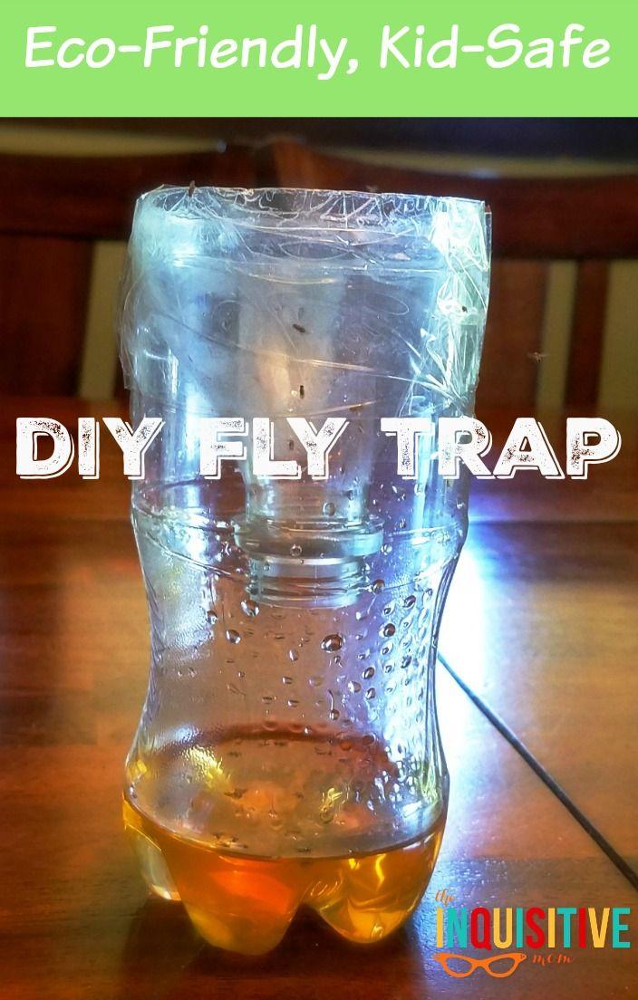 EcoFriendly DIY Fly Trap Great Ideas & DIY Home Tips