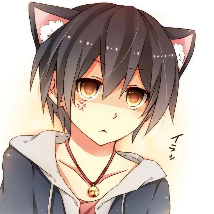 Pin by Nasu uwu on jdosjppbs   Anime neko, Anime, Anime