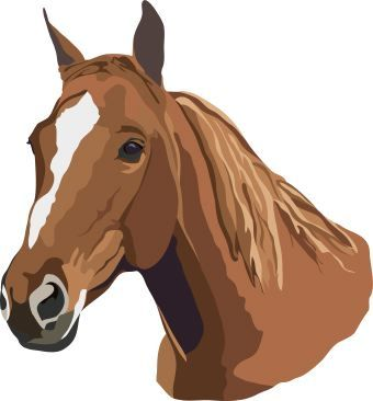 Horse brown. Free clip art of