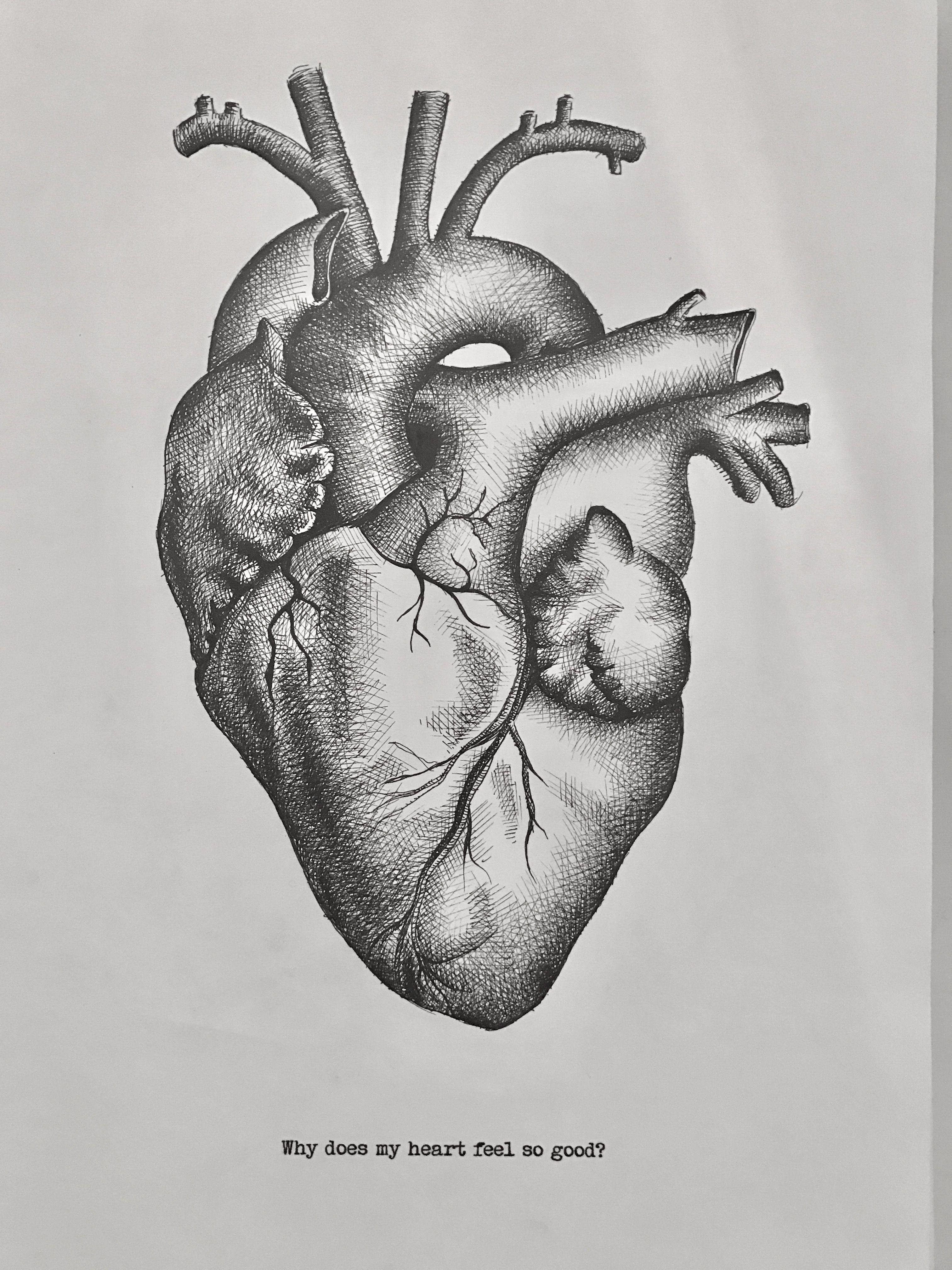 Anatomische Zeichnung Herz Fineliner Prints Zeichnungen Grafiken Kalligrafie