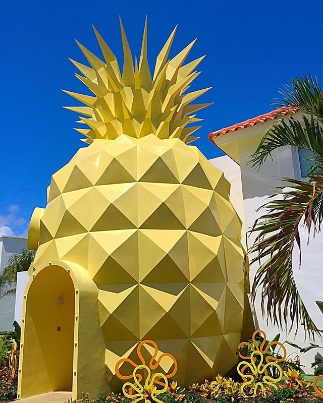 Spongebob Hotel : spongebob, hotel, Spongebob, Squarepants-themed, Pineapple, Hotel, Must-visit, Travel, List., Under