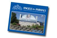 Angels For Animals : Canfield, OH
