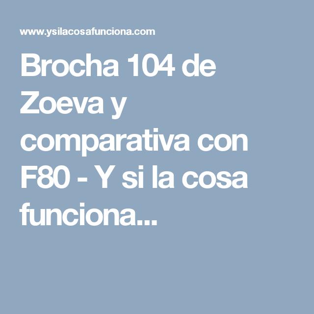 Brocha 104 de Zoeva y comparativa con F80 - Y si la cosa funciona...