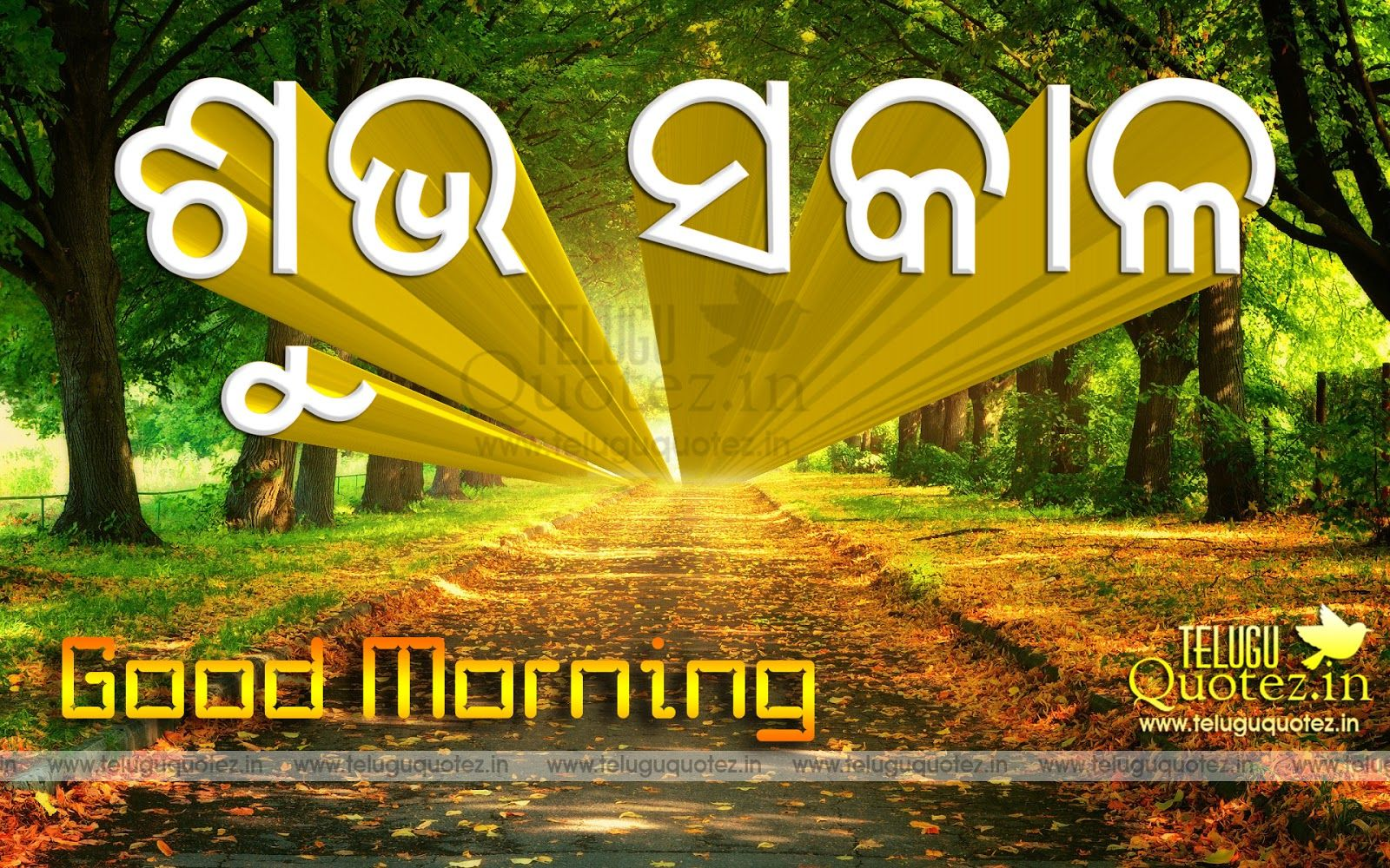 Good Morning Quotes And Sayings In Oriya Language Teluguquotezin