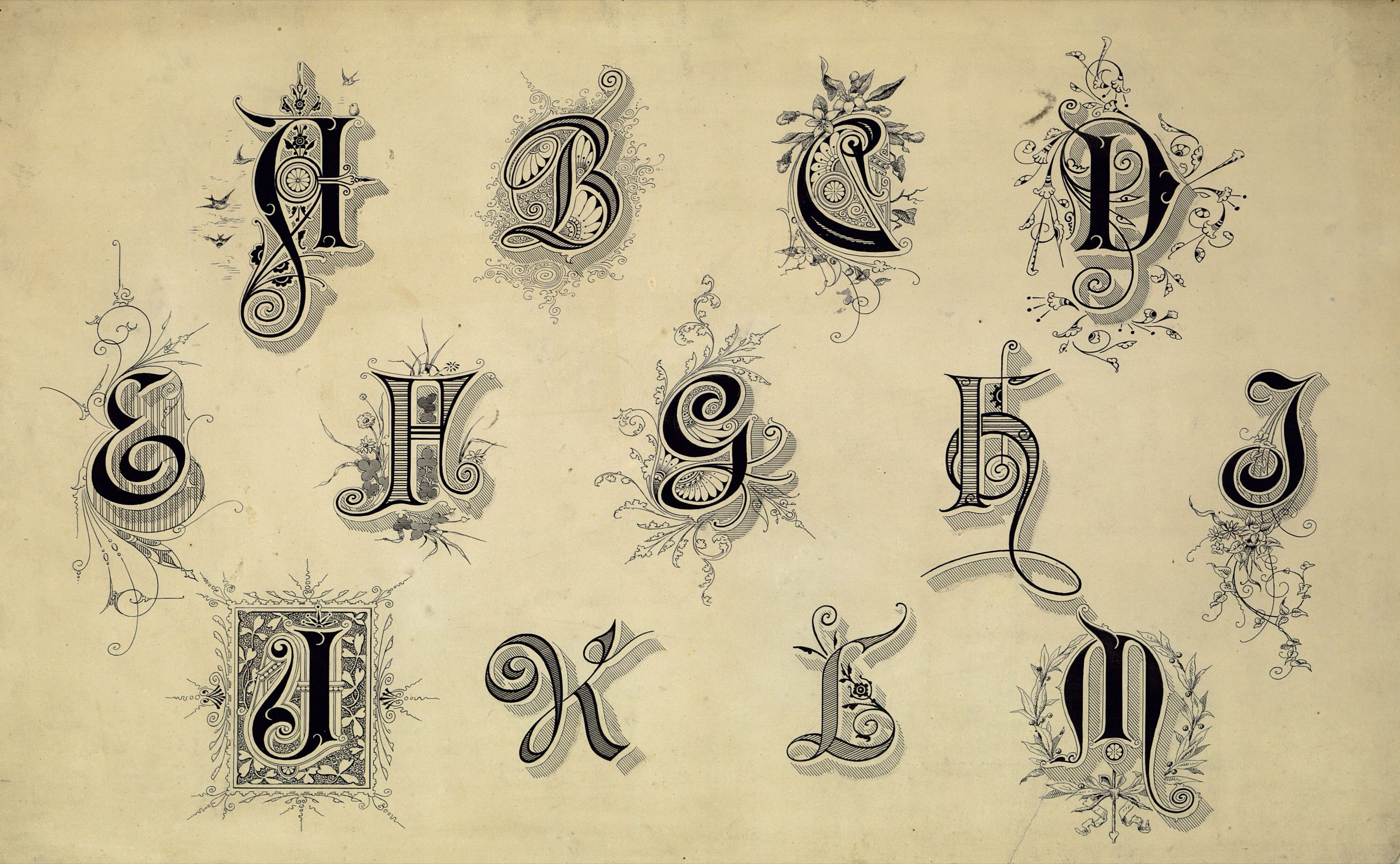 Vintage Typography Fonts And Flourishes Free Public Domain Images