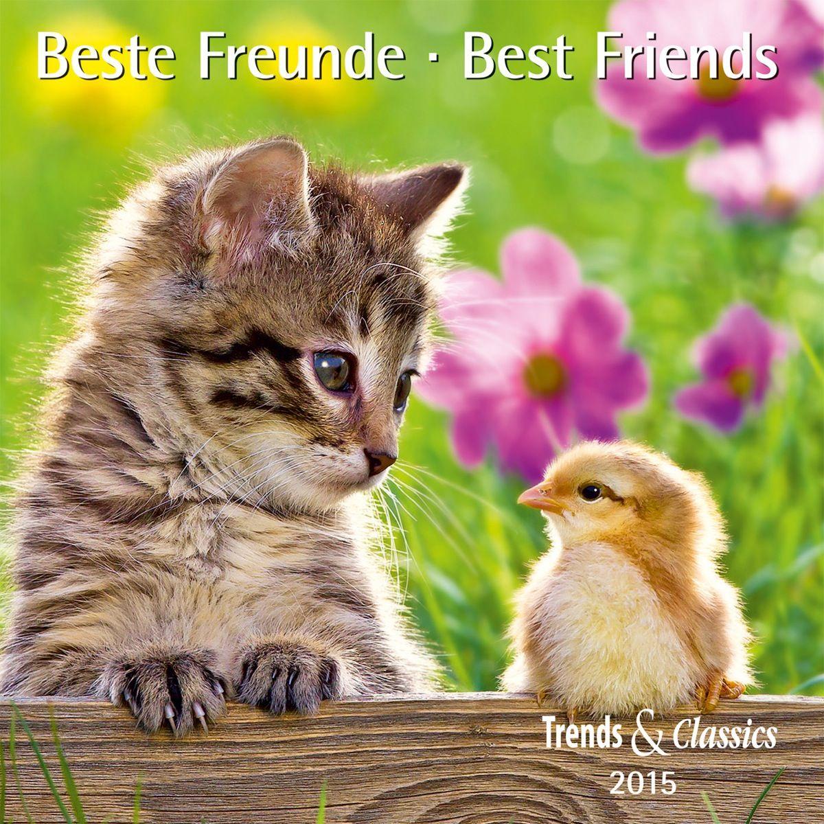 Beste Freunde 2015   Dumont Kalenderverlag: Kalender Shop - Unsere Kalender