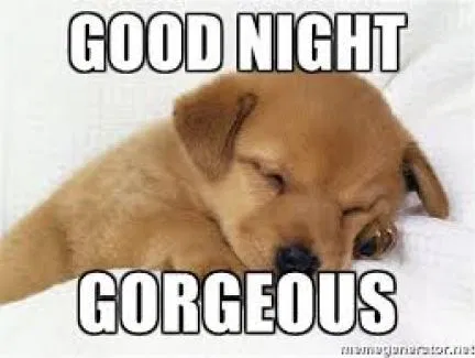Top Romantic Goodnight Memes Messages For Her Good Night Funny Good Night Hug Good Night Meme