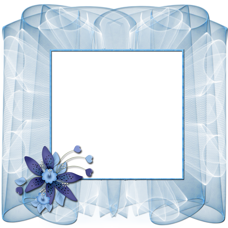 Beautiful Transparent Blue Frame with Flower Flower