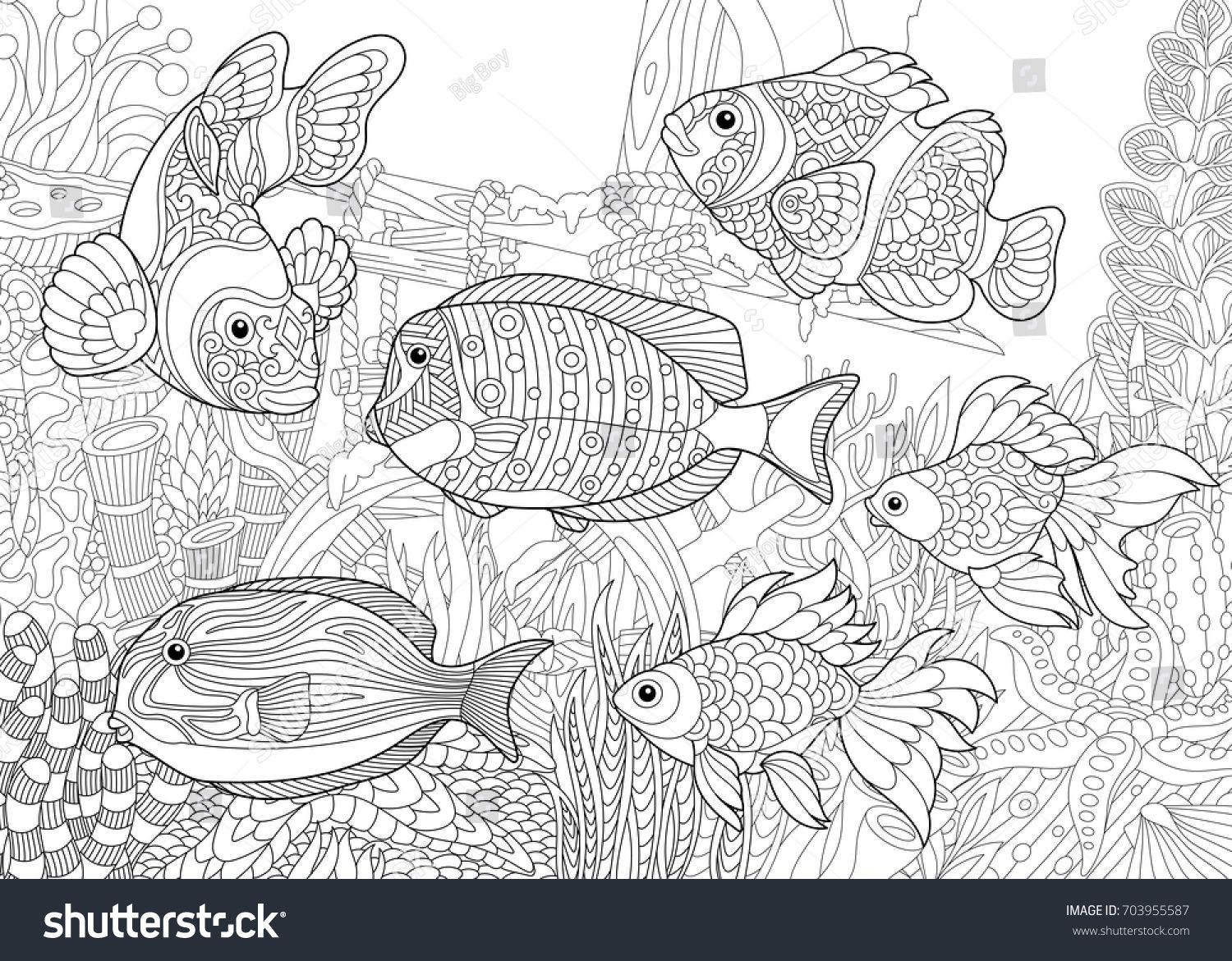 Coloring Page Of Underwater World Different Fish Species On The