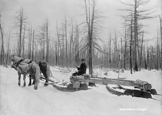 Horse Drawn Logging Sled In Michigan Mi Photo Picture Horse Drawn
