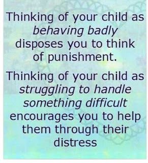 Why Won't My Child Just Behave?!