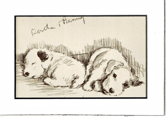 MATTED Dog Print Welsh Corgi Puppy Lucy Dawson