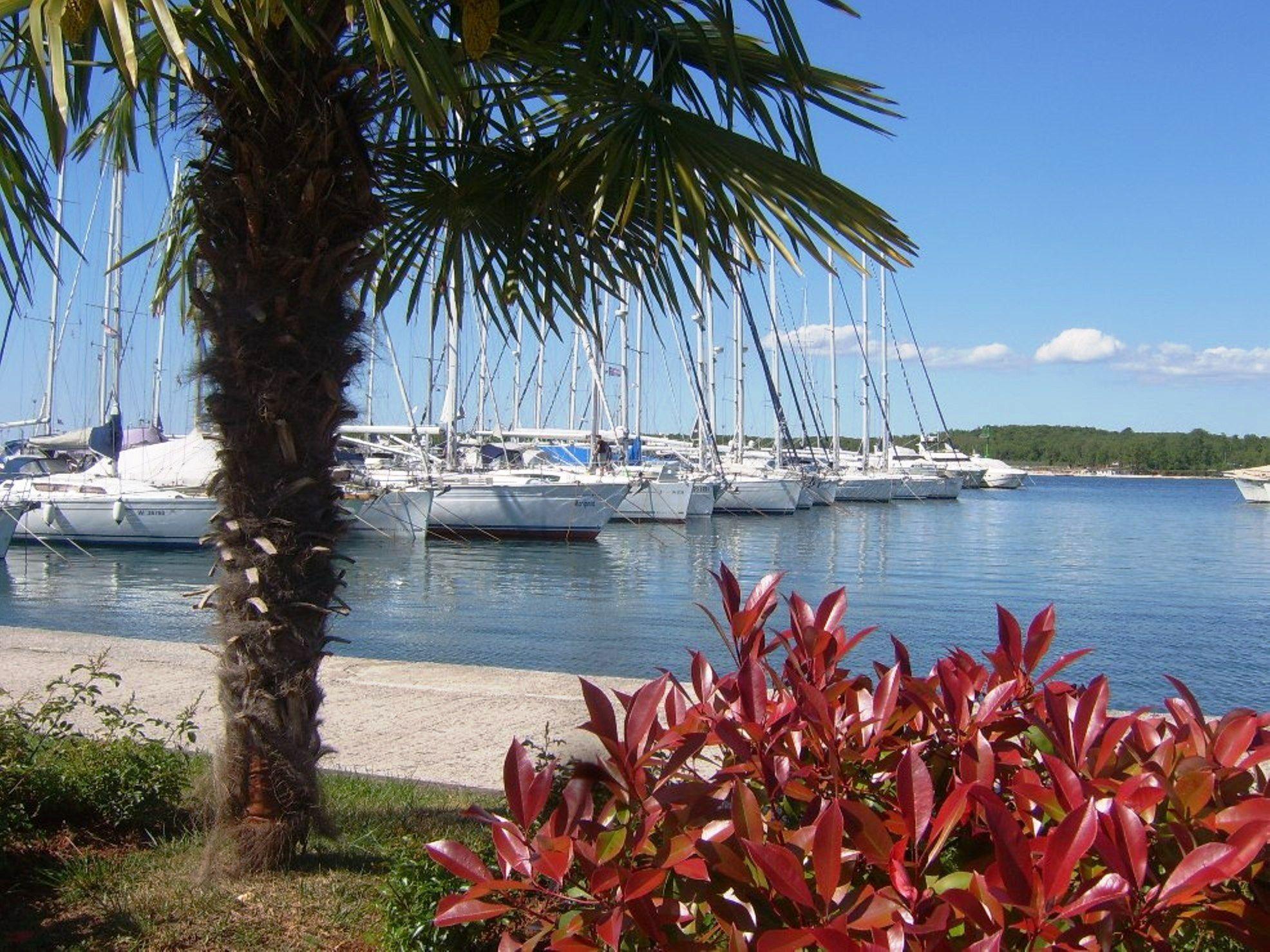 Funtana Harbor Kap Istra Istria Istrien Istra Istrie Croatia Kroatien Kroatie Chorwacja Chorvatsko Croazie Kroatienliebe Istrien Kroatien