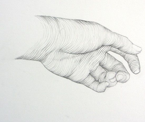 I really like the use of line in this one. The hand looks very ...