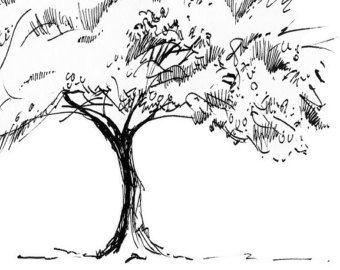encre dessin imprim arbre rable japonais 5 x 7. Black Bedroom Furniture Sets. Home Design Ideas
