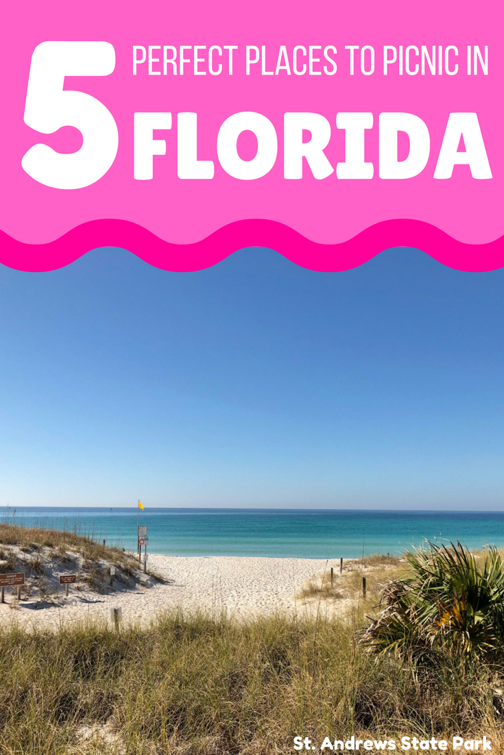 5 Family Picnic Ideas In Florida S Great Outdoors Visit Florida Florida Family Vacation Visit Florida Florida Travel