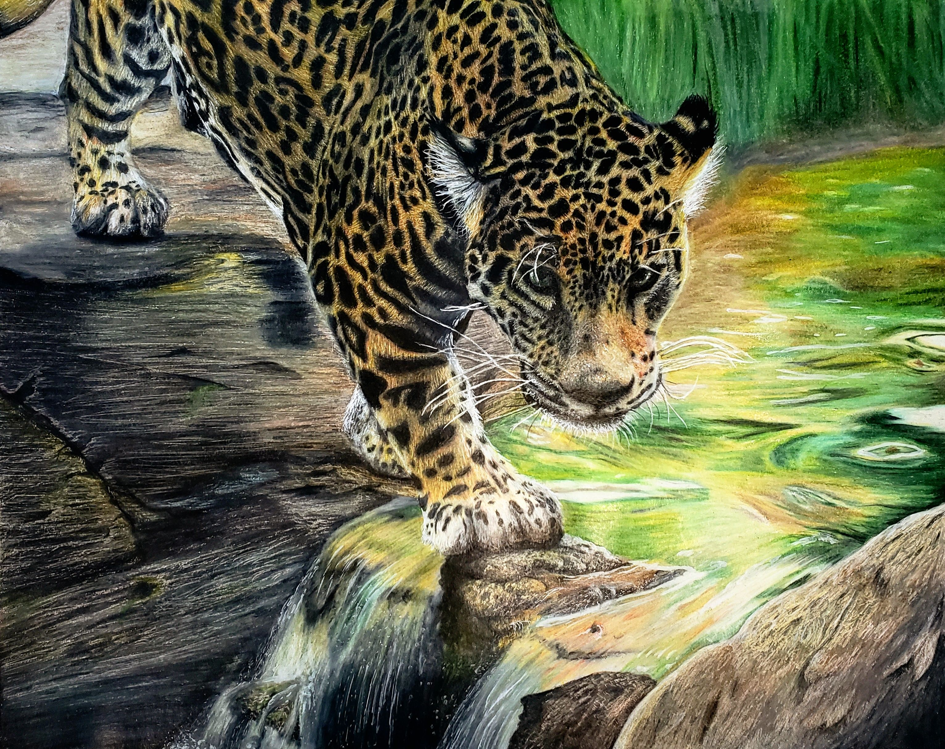 Prowling 16X20 Colored Pencil
