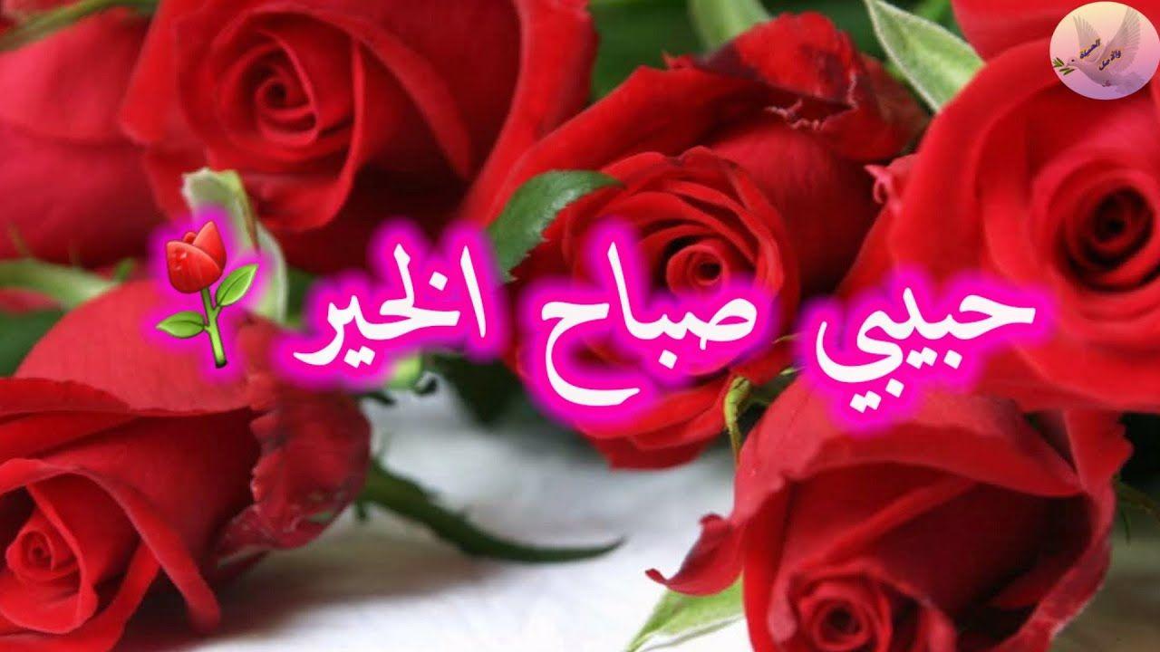 حبيبي صباح الخير صباحك ورد وفل ولوز ياعمري صباح النور اجمل حالات واتس للغاليين Youtube Neon Signs Flowers Rose