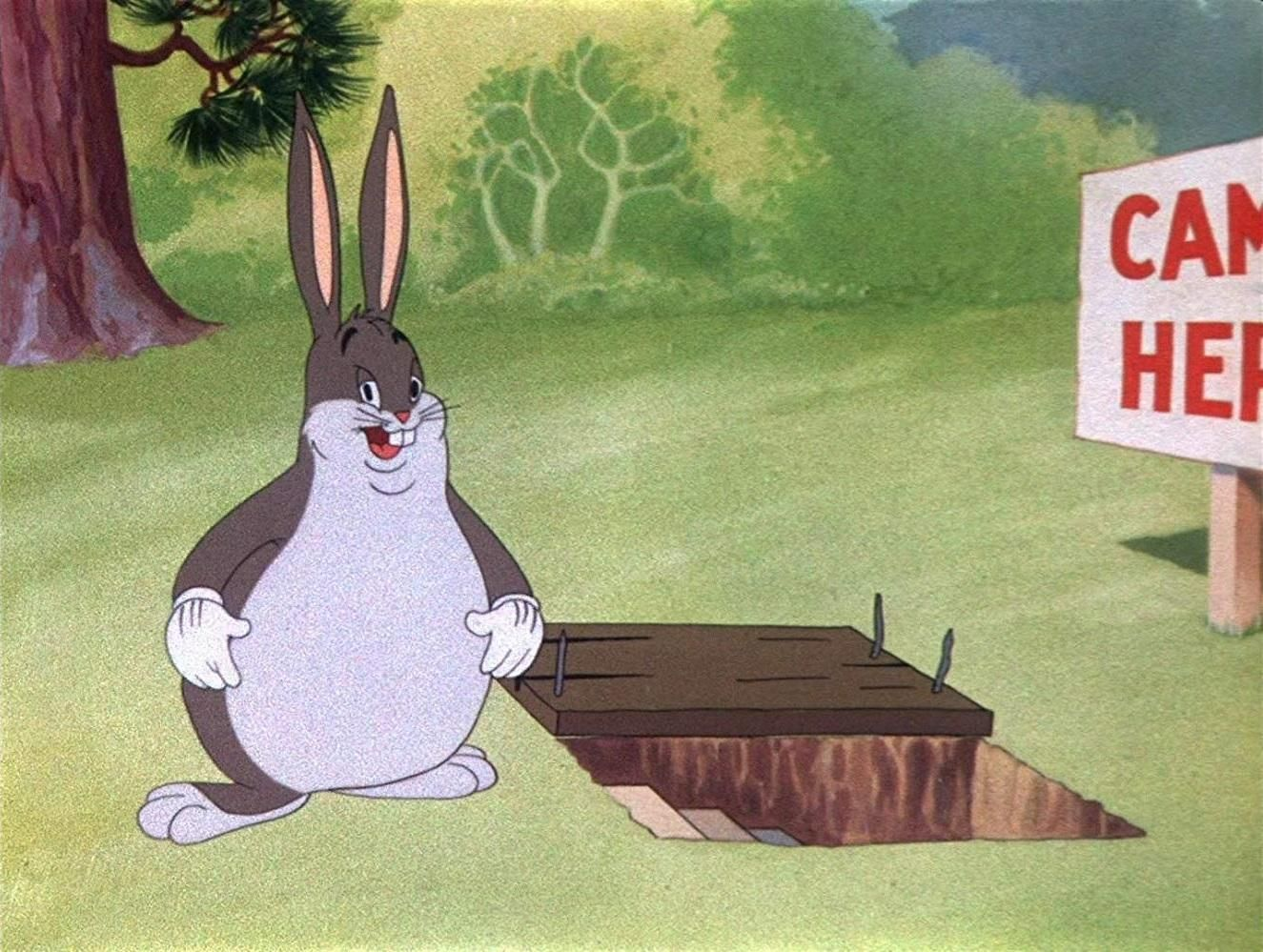 Wabbit Twouble Big Chungus Animated Characters Linkin Park Wallpaper Looney Tunes Show