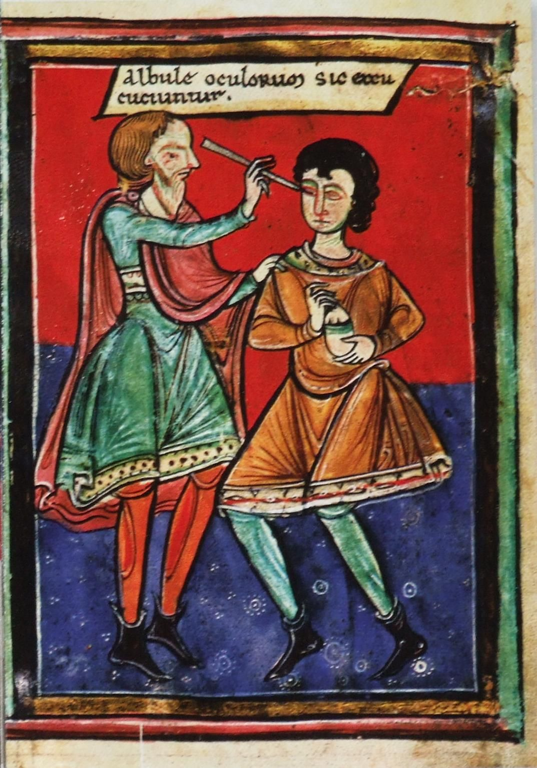 Image result for medieval manuscript doctor seeing patient