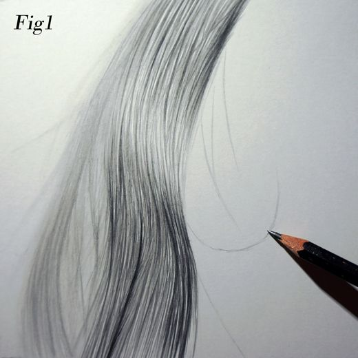 Top tips series 4 graham bradshaw drawing hair out of focus